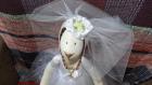 WEDDING-HARE-8